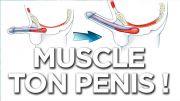 """<font size=""""5px"""">Sex-tao et l'exercice du muscle PC pour muscler ton penis </font>"""